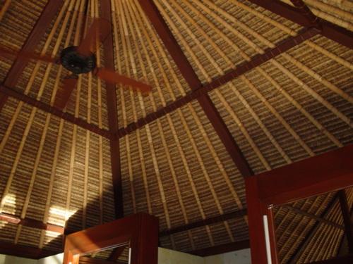 ヴィラの天井